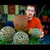 Michael Harbridge - Aged Metalic Garden Globes